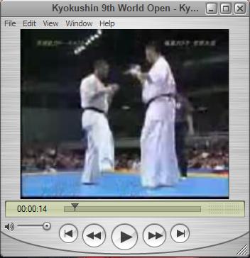دانلود کلیپ بسیار زیبا از نهمین دوره مسابقات جهانی کیوکوشین کاراته